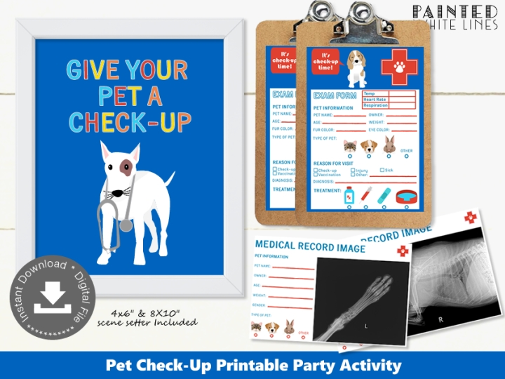 Pet Check-Up Party Activity