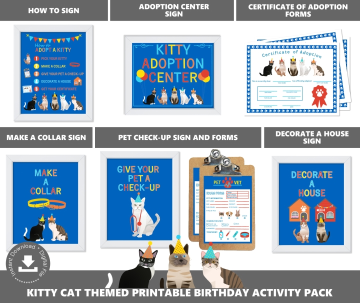 Kitty Cat Adoption Station Package